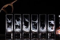 6x glasses of Fernet 50ml - hunting motif